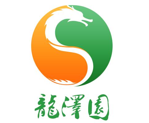 1,公司logo设计    logo设计以龙,太极,田园色彩为设计思路,体现龙泽